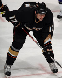 <a href='/hockey/showArticle.htm?id=18816'>The Waiver Wire: Two Recommended Ducks</a>