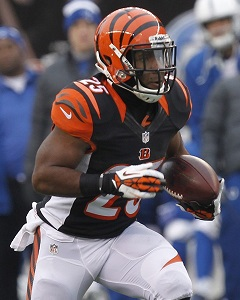 2014  Team Preview: Cincinnati Bengals