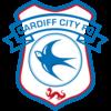 Cardiff City Depth Chart