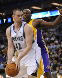 Minnesota Timberwolves Preview 2011: New Hope With Adelman, Rubio and Williams