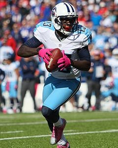 2015 Team Preview: Tennessee Titans