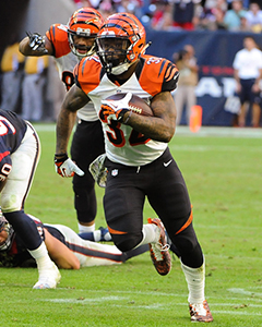 2015 Team Preview: Cincinnati Bengals