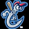 Houston Astros AA