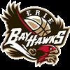 Atlanta Hawks NBA